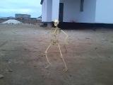 скелет про Бейнеу