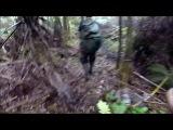 Собачьи бои охота на кабана в Гаваях с собаками ( с ножом)